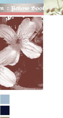 screenshot of titlebar of old website, clematis montana in monochrome