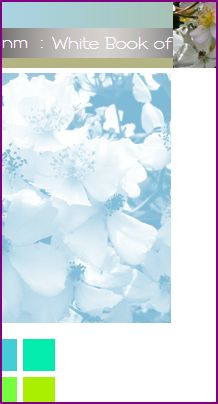 screenshot of titlebar of old website, blue butterfly and wild roses