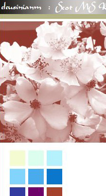 screenshot of titlebar of old website, wild roses in monochrome