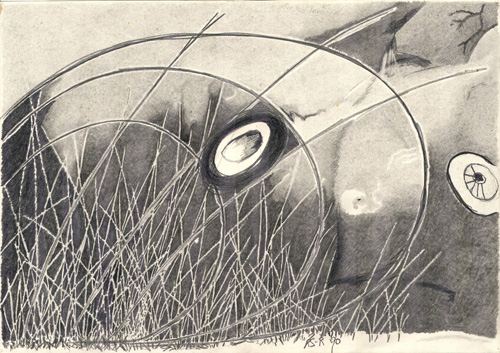 artwork, concealed creature behind lines, soft pencil drawing